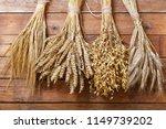 Ears Of Wheat  Rye  Barley And...