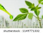 pipette over test tube dropping ... | Shutterstock . vector #1149771332