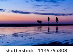 Stock photo silhouetted couple walking the dog on the beach at sunset with reflections in the water noordwijk 1149795308