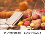 book with seasonal fruits and... | Shutterstock . vector #1149796235
