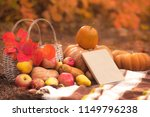 book with seasonal fruits and... | Shutterstock . vector #1149796238