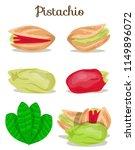 different pistachio nuts set... | Shutterstock .eps vector #1149896072