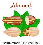 almond nuts whole half split... | Shutterstock .eps vector #1149900458