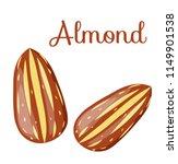 almond nut whole.almond kernel... | Shutterstock .eps vector #1149901538