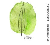 vector leaf of willow tree at... | Shutterstock .eps vector #1150008152