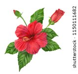 hand painted watercolor... | Shutterstock . vector #1150111682
