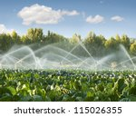 Irrigation Systems In A Green...