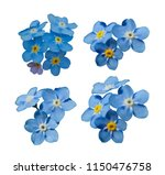 blue forget me not spring... | Shutterstock .eps vector #1150476758