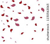 abstract flower petals confetti ... | Shutterstock .eps vector #1150563065