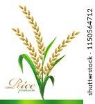 rice realistic vector... | Shutterstock .eps vector #1150564712