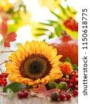 autumn still life with seasonal ... | Shutterstock . vector #1150618775
