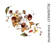 mushrooms. watercolor... | Shutterstock . vector #1150650728