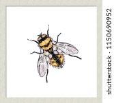 digital watercolor yellow fly.... | Shutterstock .eps vector #1150690952