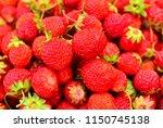 lots of strawberry berries... | Shutterstock . vector #1150745138