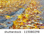 Autumn Maple Leaves On The...