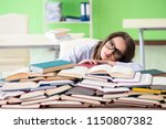 young female student preparing... | Shutterstock . vector #1150807382