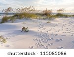 footprints in the sand at... | Shutterstock . vector #115085086