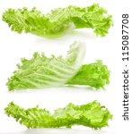 lettuce isolated on white... | Shutterstock . vector #115087708