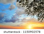 silhouette of tree branches... | Shutterstock . vector #1150902578