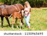 horse breeder with her 3 weeks... | Shutterstock . vector #1150965695