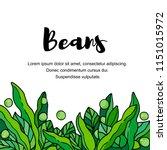 vegetables. pods of green bean  ... | Shutterstock .eps vector #1151015972