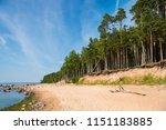 baltic sea shore in latvia.... | Shutterstock . vector #1151183885