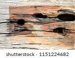 wood texture   abstract... | Shutterstock . vector #1151224682