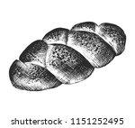 vector engraved style... | Shutterstock .eps vector #1151252495