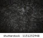 black bark texture background.   Shutterstock . vector #1151252948
