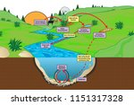 Natural Decay Cycle Of Bacteria ...
