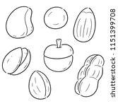 vector set of beans | Shutterstock .eps vector #1151399708