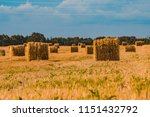 a hay in the field. before... | Shutterstock . vector #1151432792