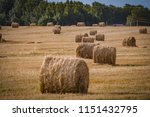 a hay in the field. before... | Shutterstock . vector #1151432795