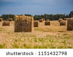 a hay in the field. before... | Shutterstock . vector #1151432798