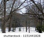 town in snowy season.... | Shutterstock . vector #1151441828