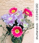 pink gerbera and chrysanthemums ... | Shutterstock . vector #1151442182