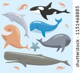 cute baby whales | Shutterstock .eps vector #1151468885