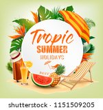 summer holiday background with... | Shutterstock .eps vector #1151509205