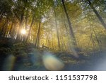meditation in soft light in the ... | Shutterstock . vector #1151537798