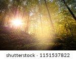 meditation in soft light in the ... | Shutterstock . vector #1151537822