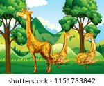 a group of giraffe in forest... | Shutterstock .eps vector #1151733842