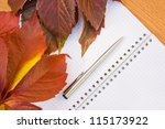 background from the autumn... | Shutterstock . vector #115173922
