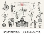 retro circus performance set... | Shutterstock .eps vector #1151800745