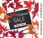 big autumn sale. fall sale... | Shutterstock .eps vector #1151846162