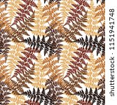 fern frond herbs  tropical... | Shutterstock .eps vector #1151941748