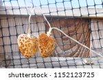 machine cut  neglected  rusting ...   Shutterstock . vector #1152123725
