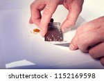 the hands of a man hold a scoop ... | Shutterstock . vector #1152169598