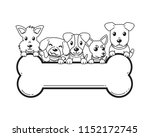 vector cartoon dogs and big... | Shutterstock .eps vector #1152172745