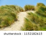 lush tall grass bending in a... | Shutterstock . vector #1152182615