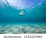 girl snorkeling on a clean... | Shutterstock . vector #1152222962